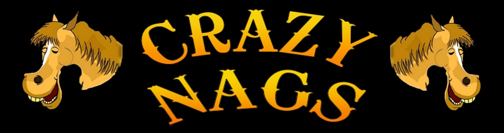CrazyNags